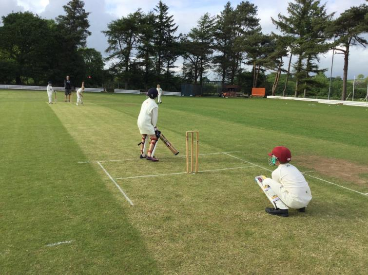 Junior cricket action