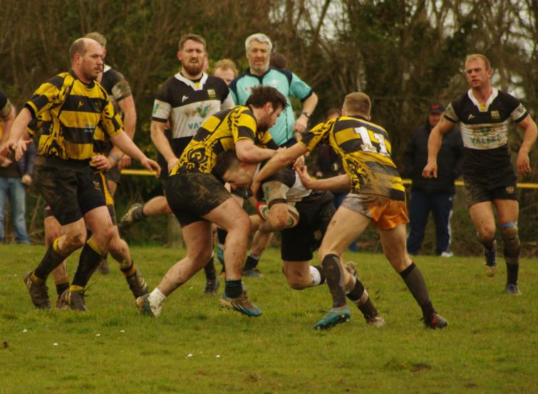 Pembroke Dock Harlequins drive on against Llangwm